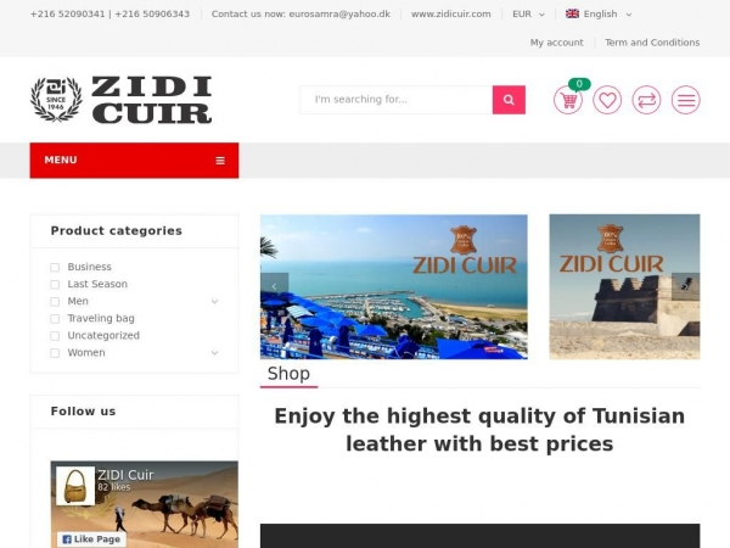 zidicuir.com